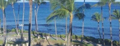 Hilton is one of Enjoy the Big Island like a local.