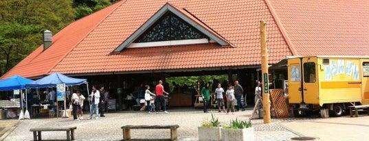 道の駅 吉野路 黒滝 is one of Lugares favoritos de Shigeo.