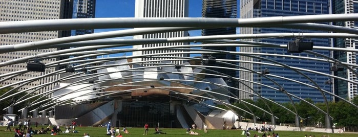 Millennium Park is one of Places that are checked off my Bucket List!.