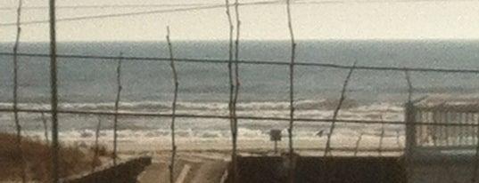 Delavan Ave Beach is one of สถานที่ที่บันทึกไว้ของ Linnie.