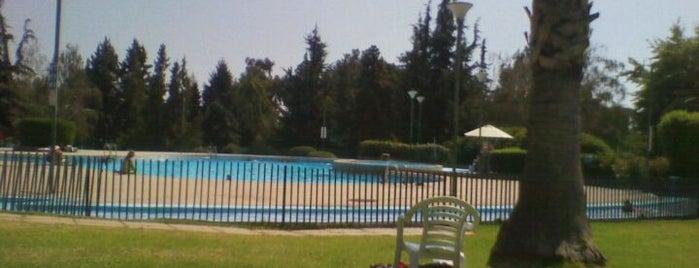 Club de Campo Quinchamalí is one of Locais salvos de Eduardo.