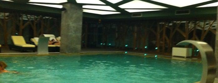 Euphoria Fitness & Health Club / SPA is one of Best places in Bursa, Türkiye.