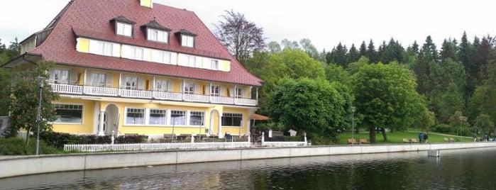 Waldsee is one of Marcel'in Beğendiği Mekanlar.
