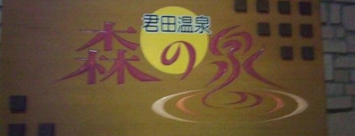 君田温泉 森の泉 is one of สถานที่ที่ ZN ถูกใจ.