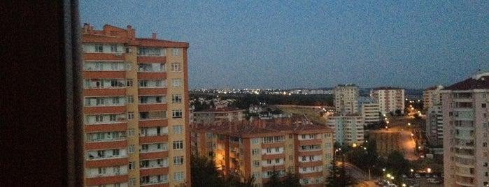 Çiğdem is one of Çukurambar ve Civarları.