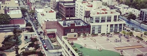 Twenty-Second Floor, LIC is one of Neighborhood Locales: L.I.C..
