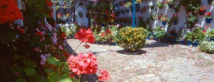 Casa-Patio de la calle San Juan de Palomares, 11 is one of Visita virtual a los Patios de cordoba.