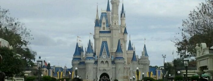 Magic Kingdom® Park is one of My vacation @Orlando.