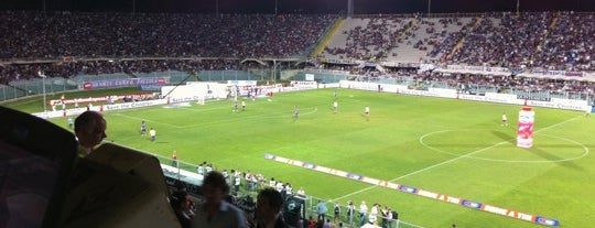 Stadio Comunale Artemio Franchi is one of Soccer Stadiums.