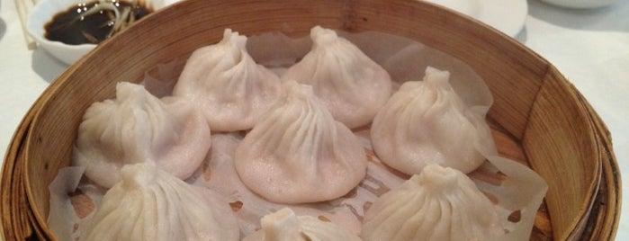 456 Shanghai Cuisine is one of Favorite NYC restaurants.