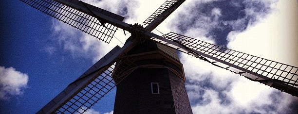 Murphy Windmill is one of squeasel: сохраненные места.