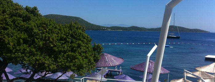 Mor Plaj is one of LİKE.