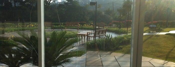 São Francisco Golf Club is one of Golf Courses in Brazil.