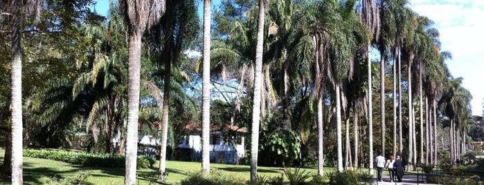 Jardim Botânico de São Paulo is one of Parques e Áreas de Lazer.