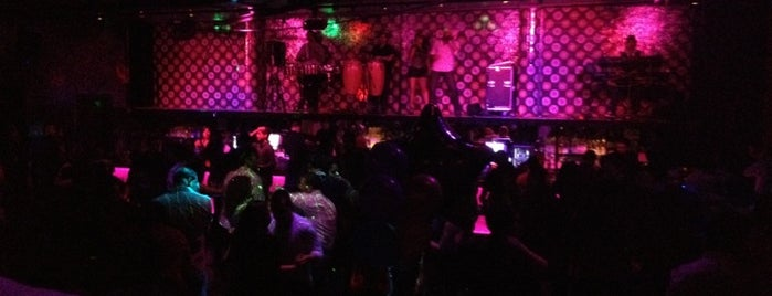 5th Amendment is one of WON's Week in Houston Nightlife!.