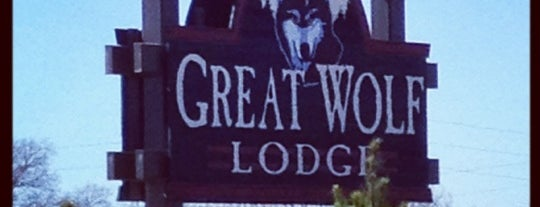 Great Wolf Lodge is one of Orte, die Gil gefallen.
