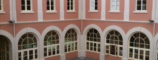 """Casa de la Cultura """"San Agustín"""" - Antiguo Convento de Ntra. Sra. de Gracia is one of Islas Canarias: Tenerife."""