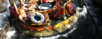 Kali River Rapids is one of Locais curtidos por Fernando.
