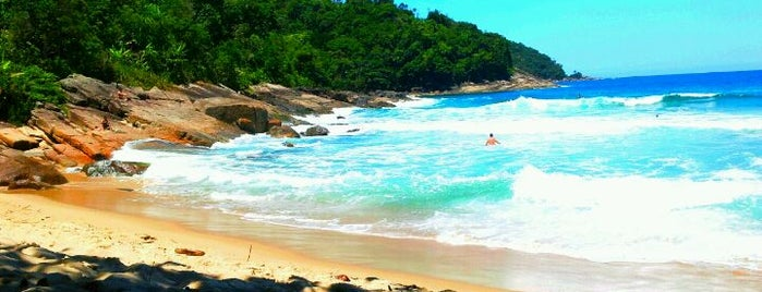 Praia Vermelha do Centro is one of Praias Preferidas.
