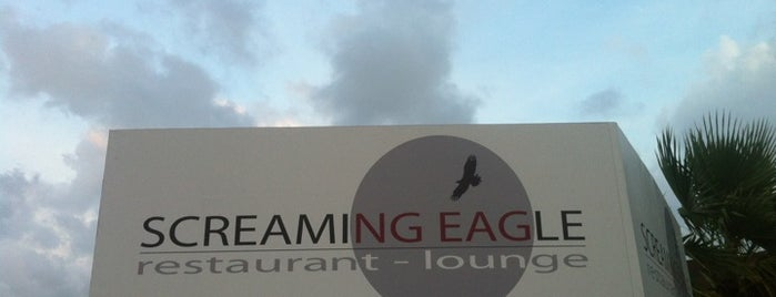 Screaming Eagle is one of Aruba.
