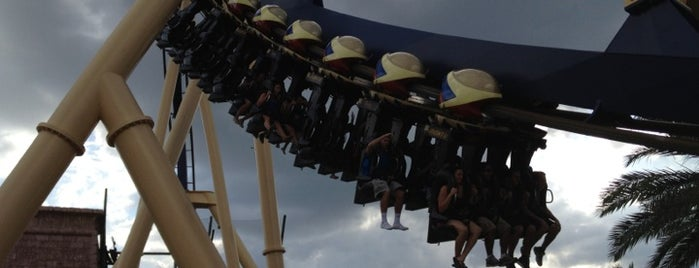 Montu is one of Stevenson's Favorite Roller Coasters.