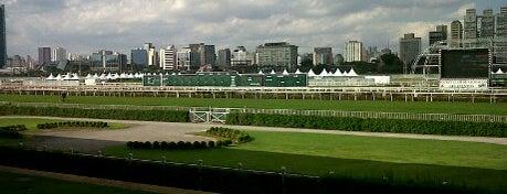 Jockey Club de São Paulo is one of 100+ Programas Imperdíveis em São Paulo.