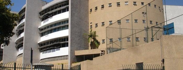 Faculdade de Direito de São Bernardo do Campo is one of Fernandaさんのお気に入りスポット.