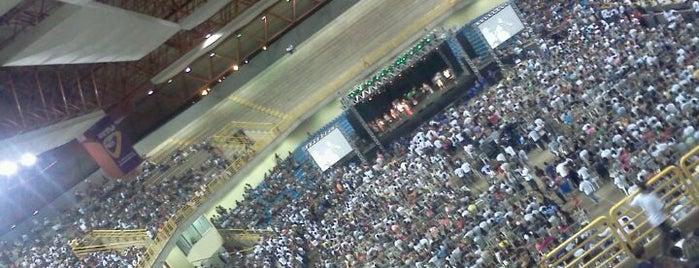 Goiânia Arena is one of สถานที่ที่ Diego ถูกใจ.