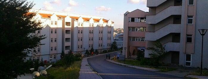Vadi Yurtları is one of Gokay.
