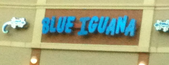 Blue Iguana is one of Favorites.