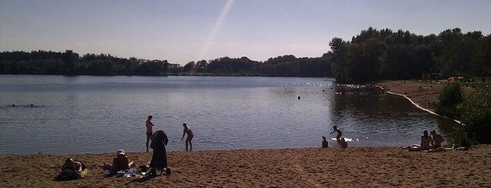 Jezero Poděbrady is one of Travel - CR.
