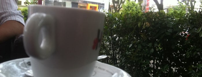 Loucos por Café