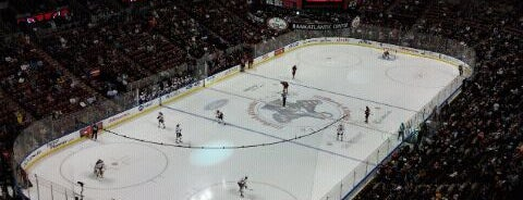 BB&T Center is one of Great Sport Locations Across United States.