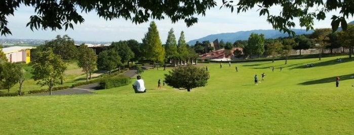 養老公園 is one of Posti che sono piaciuti a Masahiro.