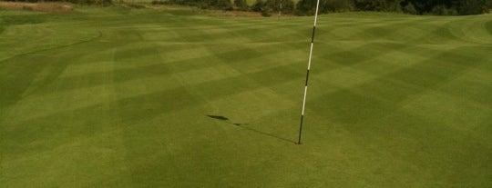 Round of golf anyone?