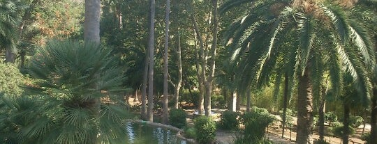 Jardines De Alfabia is one of mallorca.