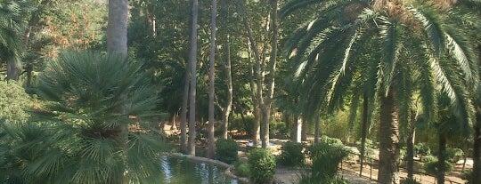 Jardines De Alfabia is one of die sehenswürdigkeit.