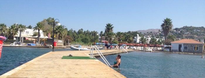 Club Armonia Beach & Surf is one of hotels 2.