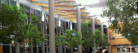 Victoria International Airport (YYJ) is one of สนามบินนานาชาติ (1).