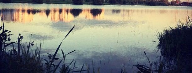 Черневские пруды is one of สถานที่ที่บันทึกไว้ของ Artem.