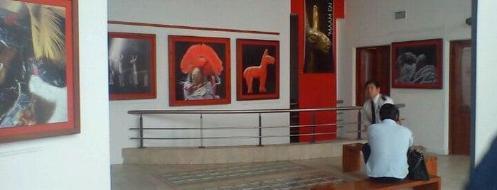 MAAM (Museo de Arqueología de Alta Montaña) is one of สถานที่ที่ Marcelo ถูกใจ.