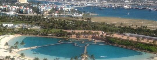 Dolphin Cay is one of Orte, die Anne gefallen.