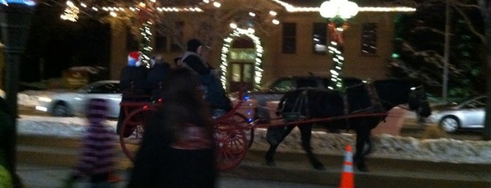 Carriage Ride Tour Of Downtown is one of Denver 2014.