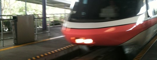 Monorail Coral is one of Orlando Florida.