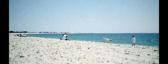 Surfside Beach is one of Nantucket.