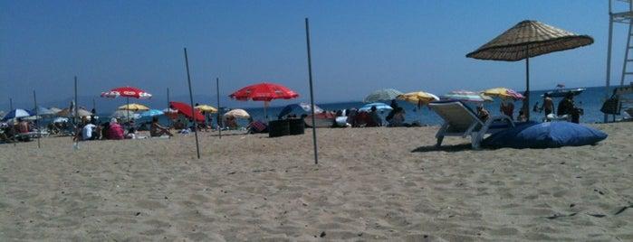 "Olivera Beach is one of ""Sıcak Temas"" Yaşatan Yerler."