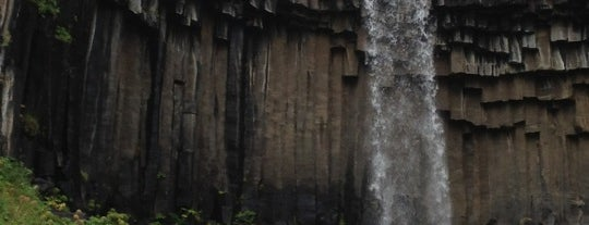 Svartifoss is one of Iceland Grand Tour.