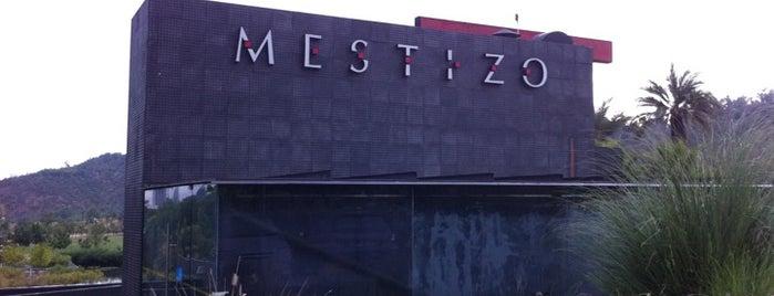 Mestizo is one of Santiago.