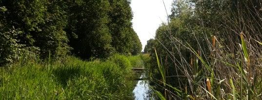 Stadslandgoed De Kemphaan is one of Verassend Almere.