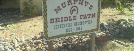 Murphy Bridle Path is one of Steve's To Do.